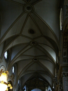 smallp1020153 Vienna: churches and horses