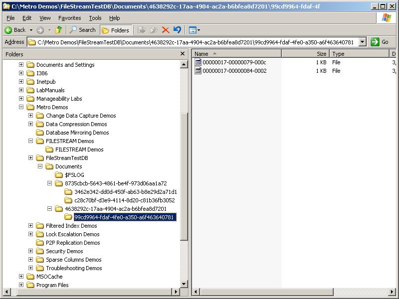 filestream directory structure