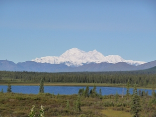 smallp1030847 Summer travels part 1: Alaska (Denali, Seward, Homer)
