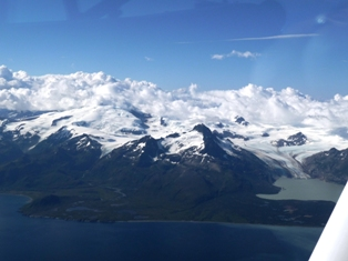 smallp1040067 Summer travels part 1: Alaska (Denali, Seward, Homer)