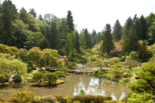 small mg 2024 Photos: Japanese Garden at Seattle Arboretum