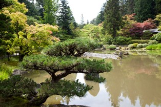 smallimg 1986 Photos: Japanese Garden at Seattle Arboretum