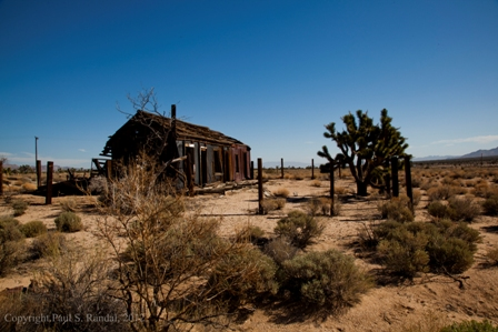 small mg 2689 Photos from the Mojave Desert